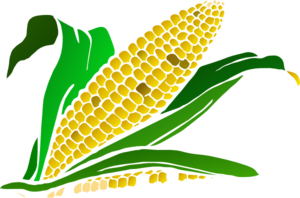 Corn clip art at vector clip art free 3 clipartcow