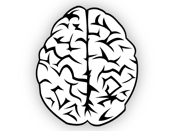 Free clip art brain download free vector art 2