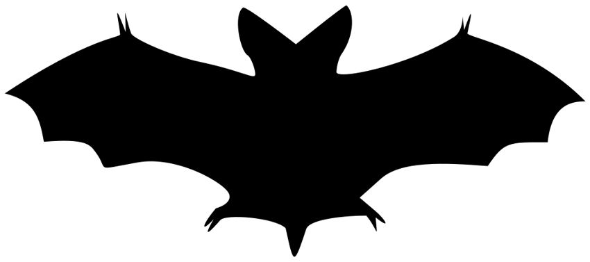 Free halloween clip art bat the graphics fairy