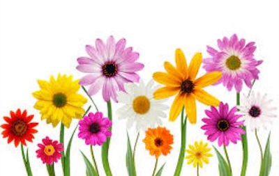 Free may flowers clipart