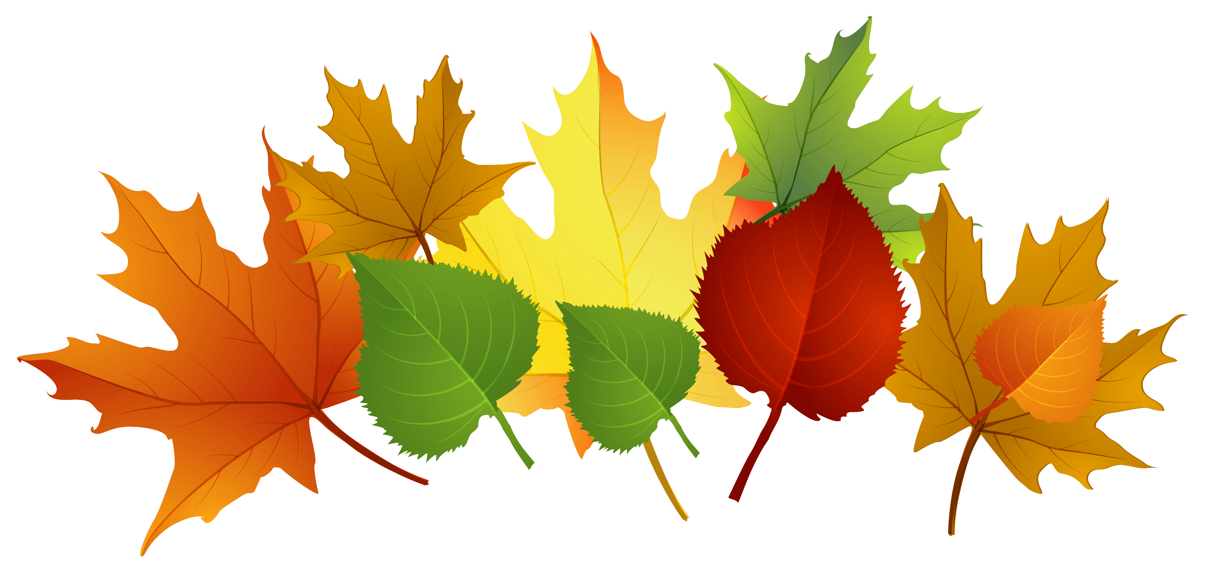 Photos of fall leaf clip art fall leaves clip art free - Leaves paintings and drawings ...