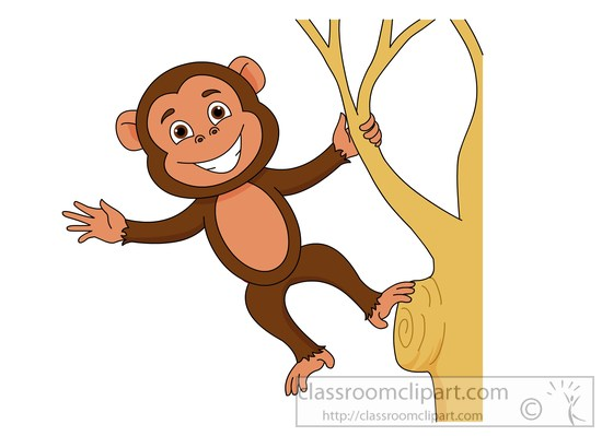 Search results search results for tamarin monkey pictures clip art
