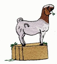 Boer goat clip art images of drawing goat wallpaper boer goats