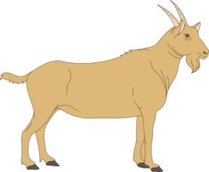 Brown goat clip art high quality clip art