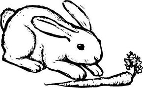 Bunny free rabbits clipart free clipart graphics images and photos 3