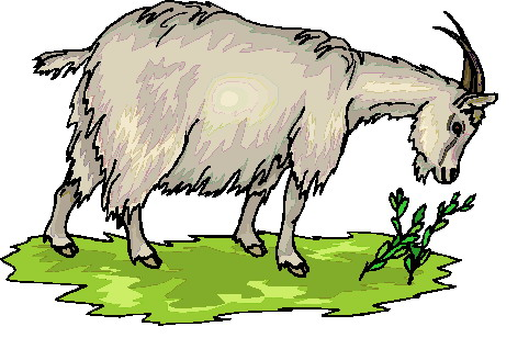 Goat clipart clipart cliparts for you 4