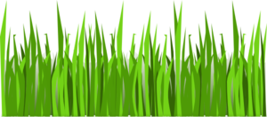 Grass cook out clip art at clker vector clip art