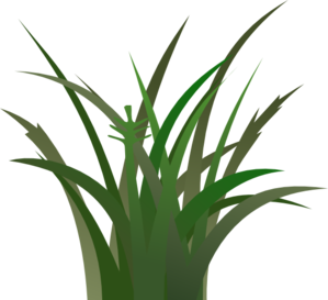 Green grass clip art vector clipart cliparts for you