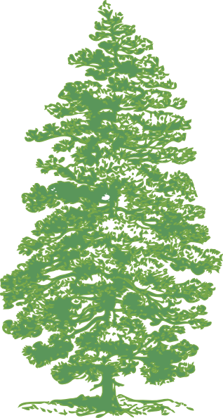 Green pine tree clip art at clker vector clip art