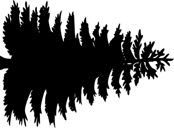 Pine tree outline large pine tree clip art vector clip art