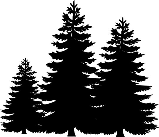 Pine tree silhouette clip art cliparts accent wall mural
