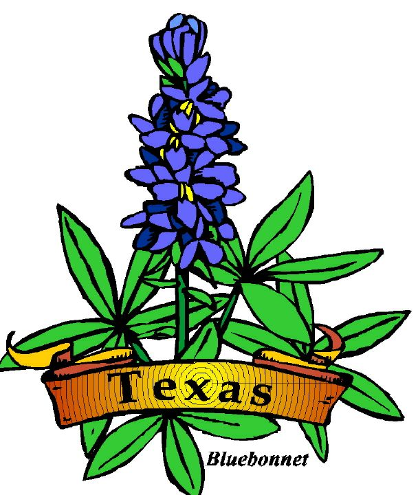 Texas clip art free texas symbols free cliparts that you can