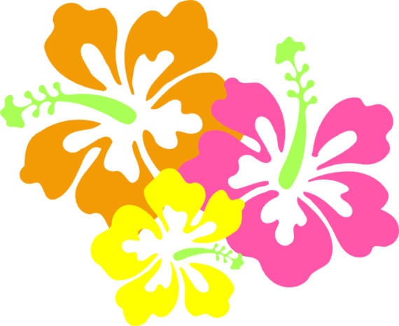 Hawaiian luau clip art border clipart free to use clip art resource