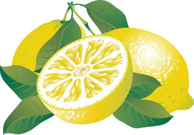 Lemon citrus fruit clipart