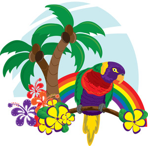 Hawaiian bird clipart