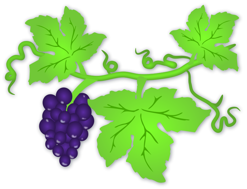 Grapes clip art download