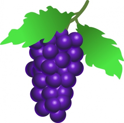 Grapes clipart black and white free clipart images