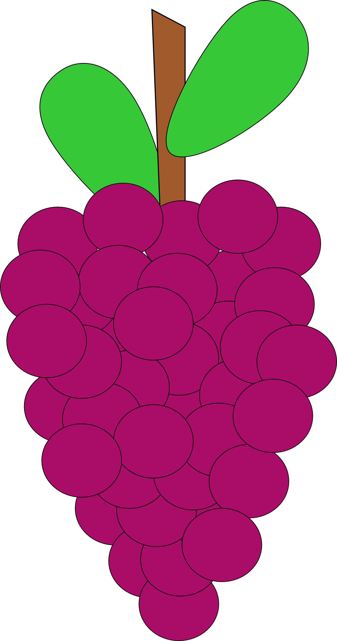 Grapes clipart grape fruit clip art downloadclipart org