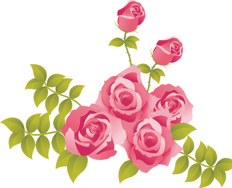 Pink roses painted picture clipart 0