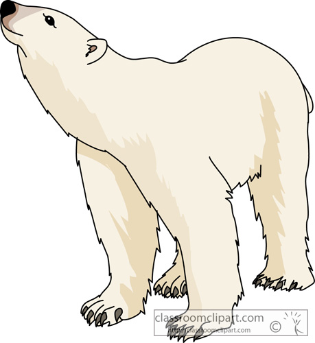 Art polar bear clipart clipart kid 3