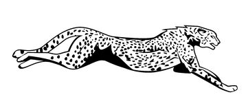 Cheetah tattoo illustration 5 megapixl cliparts