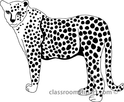 Free cheetah clipart clip art pictures graphics illustrations 2