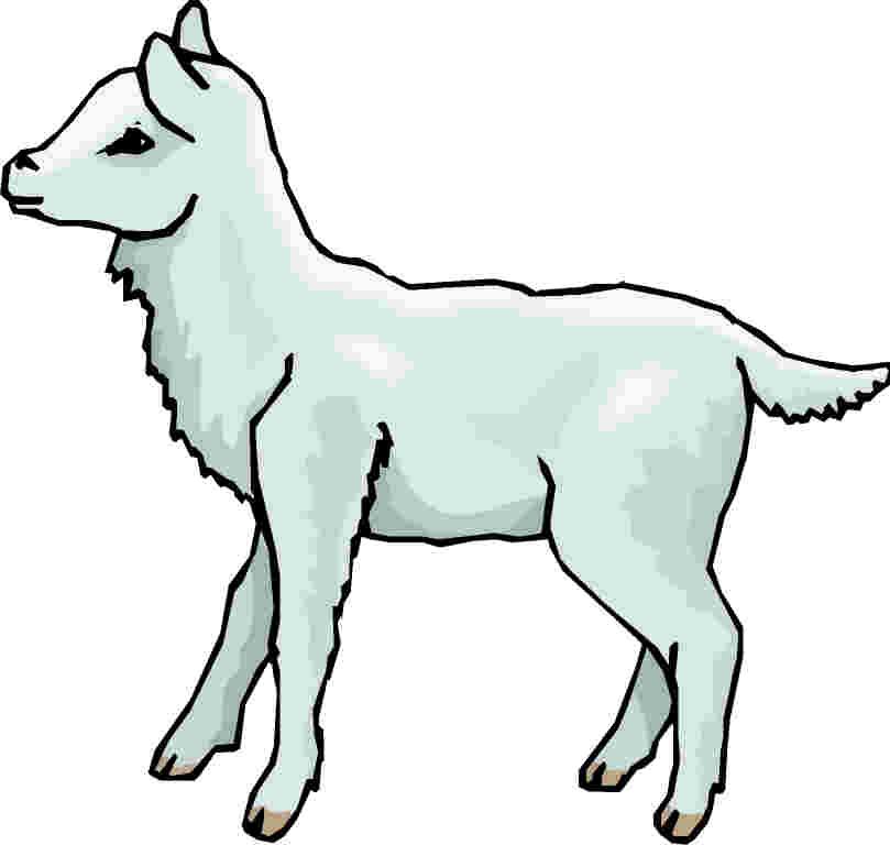 Lamb clip art free clipart images 8