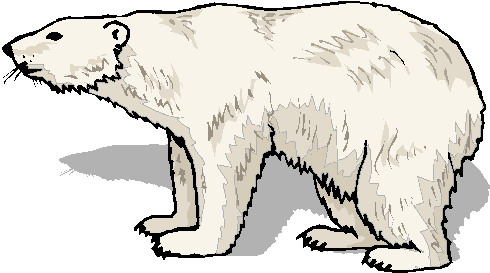 Polar bear clip art black and white free clipart 7