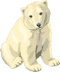 Sitting polar bear cub clip art high quality clip art
