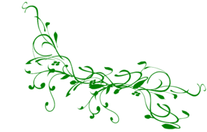 Green vine clip art at vector clip art