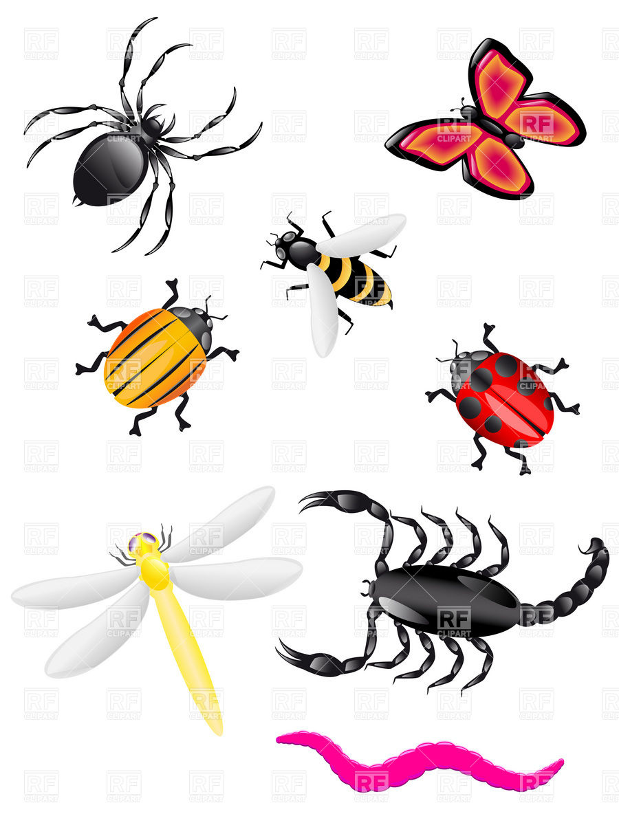Bugs and insects clipart kid 3