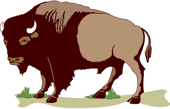 Cartoon Buffalo Clipart Kid Clipartix