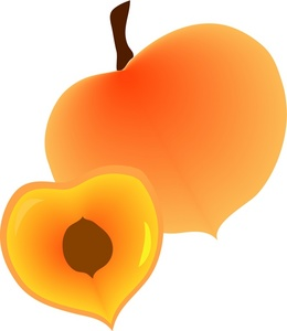 Clipart peach coloured image