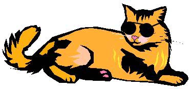 Cool cat clipart kid
