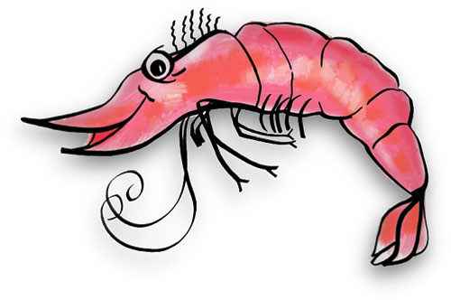 Free shrimp s animations clipart