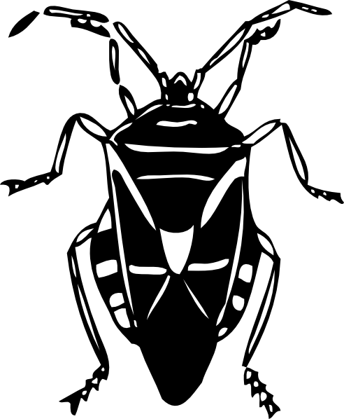 Insect clipart black and white free images 2