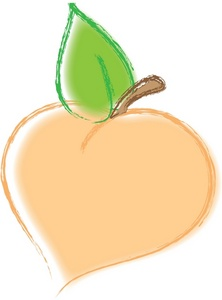 Peach clipart image beautiful drawing of a luscious delicious