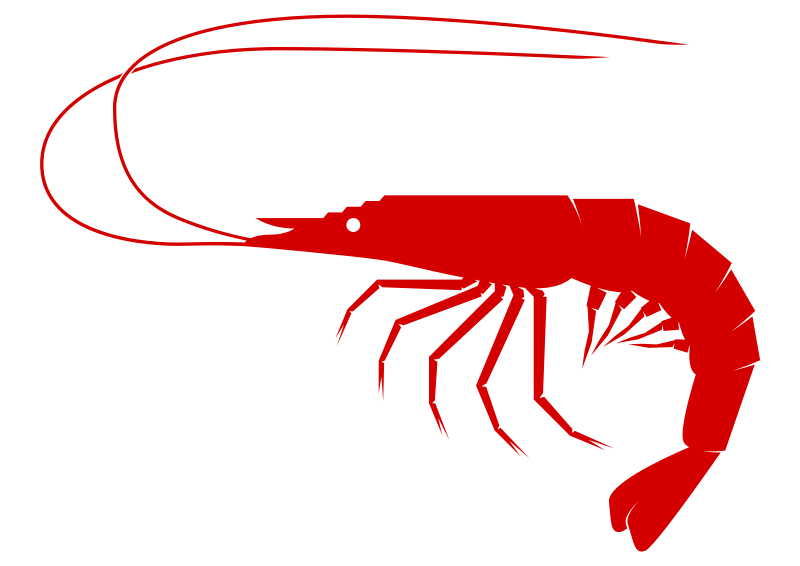 Shrimp free to use clip art