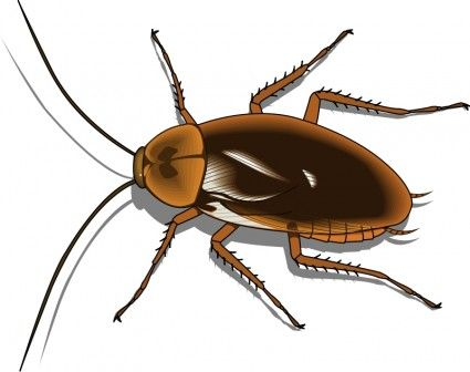 Vector for free insects and clip art on