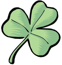 4 leaf clover clipart of shamrocks and four leaf clovers 3