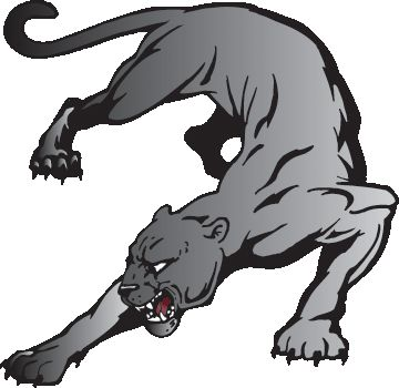 Cougar panthers clip art and art on