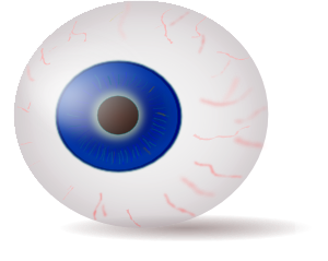 Eyeball clipart free clipart