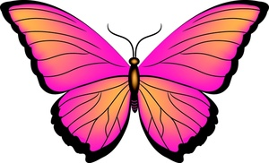 Butterflies pink butterfly clipart free images