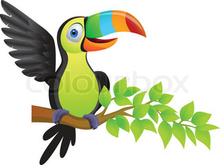 Cartoon toucan vector toucan bird cartoon colour