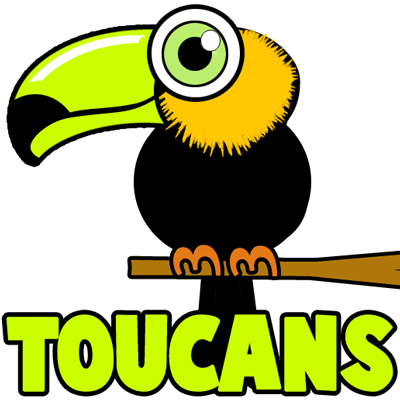 How to draw cartoon toucans with easy step by drawing