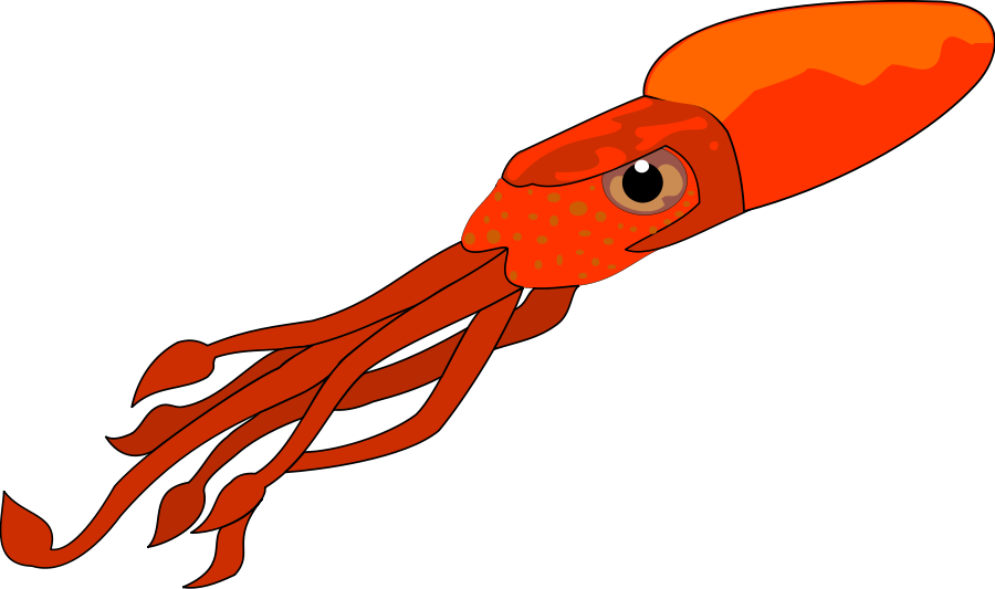 Squid Clipart