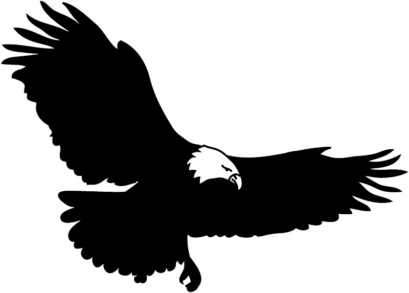 Bald eagle free eagle clip art pictures 6