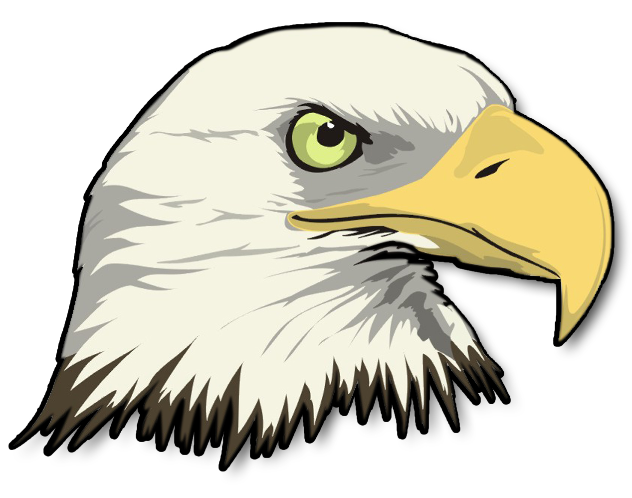 Cartoon bald eagle clipart