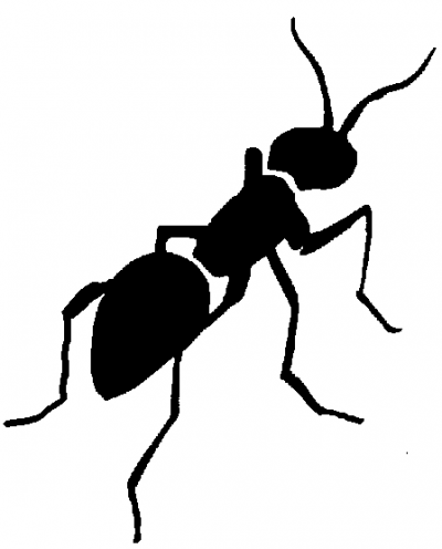 Ant black and white ant clipart fans 2 wikiclipart