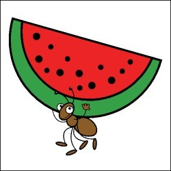 Ant carrying food clipart